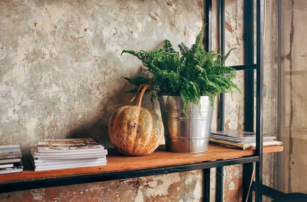 The Myriad Advantages of Indoor Plant Scaping