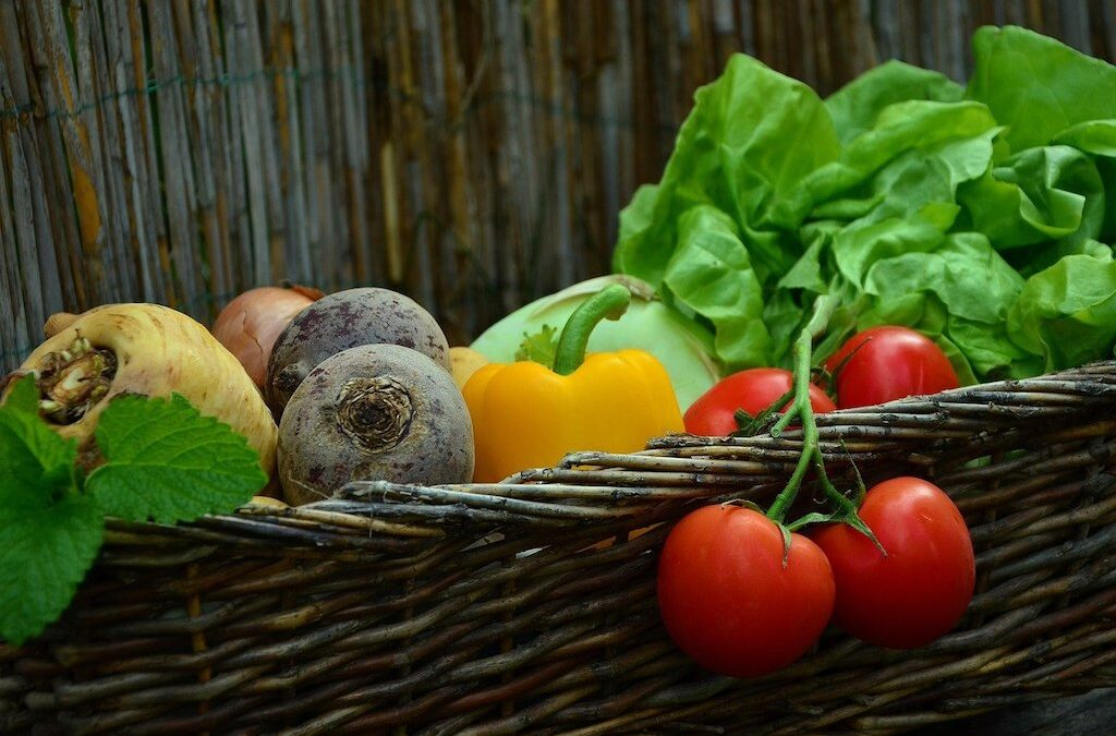 How to Grow a Garden You Can Eat from All Year Round